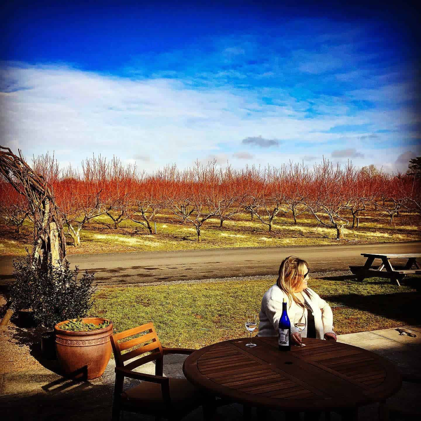Rose Vineyards and Winery in the Fall